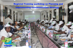 Regional Training workshop on Planning and Implementation Communication Strategy